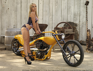 Randy Hocker Custom Harley